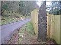 NH4039 : Mo Rùn Geal Òg by Craig Wallace