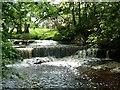 NY6861 : Park Burn Weir by Anthony Parkes