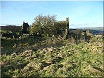 SE0023 : Ruined farmhouse, Deacon Hill  by Humphrey Bolton