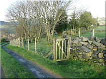 SE0023 : Footpath at Owlet Hill by Humphrey Bolton