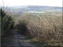 TQ5359 : North Downs Way at Otford Mount by Malc McDonald