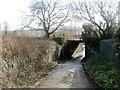 ST1889 : Northern side of a former railway bridge, Trethomas by Jaggery