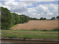 SJ6541 : Farmland south of Audlem, Cheshire by Roger  Kidd