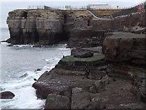 SY6768 : Rock Ledges, Portland Bill by Colin Smith