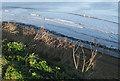 NZ8811 : Sea defences by Pauline E