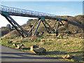 NZ8811 : Golfers' footbridge by Pauline E