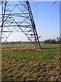 SJ9207 : Pylon View by Gordon Griffiths