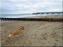 SZ1191 : Boscombe Beach by Maigheach-gheal