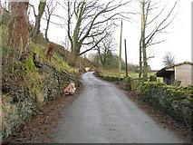 SD9321 : Inchfield Road, Walsden by John Slater