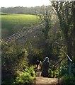 SX8957 : Steps on the coast path by Derek Harper