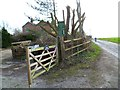SZ8799 : Entrance to North Honer Farm by Shazz