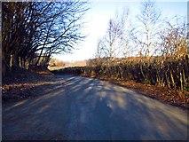 TQ5334 : Forge Road by Chris McAuley