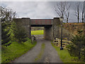 SD7913 : Springside Farm Underbridge by David Dixon
