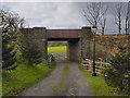 SD7913 : Springside Farm Underbridge by David Dixon