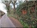 SX9480 : The side of the road near Brickhouse Farm by David Smith