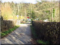 TQ5335 : Forge Farm access road by Chris McAuley