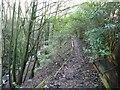 SE0343 : Footpath along Steeton Beck by Christine Johnstone