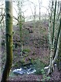 SE0343 : Steeton Beck at Whitley Head by Christine Johnstone