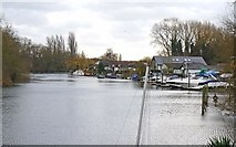 TQ0866 : The Thames at Lower Halliford by Mike Smith