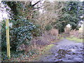 TM2751 : Bridleway to the A1152 Woods Lane by Geographer