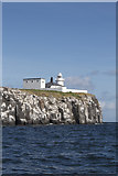 NU2135 : Inner Farne Lighthouse and Cliff by Peter Skynner