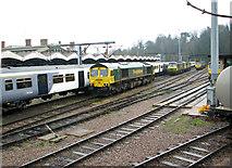 TM1543 : Freightliner locomotives at Ipswich railway station by Evelyn Simak