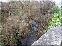 ST5192 : Mounton Brook, Pwllmeyric by Jaggery