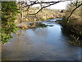 SU1226 : River Ebble, Homington by Maigheach-gheal