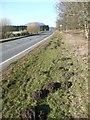 NN9950 : Molehills beside the A9 by Russel Wills