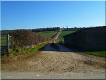 SU8312 : Track east from Brickkiln Farm by Shazz