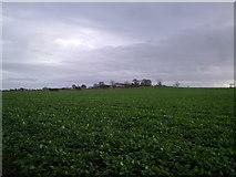 NZ2173 : View across the fields East of Dinnington by Robert Graham