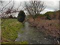 SJ7493 : Flooded Footpath by David Dixon