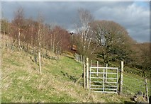 SE0023 : Gate on footpath to Sandy Pickle by Humphrey Bolton