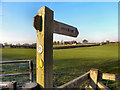 SJ7188 : Signpost, Bollin Valley Way by David Dixon