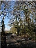ST0307 : A373 Honiton Road by Derek Harper