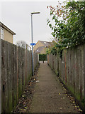 TL4661 : Path to Ramsden Square by Hugh Venables
