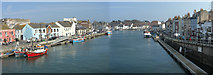 SY6778 : Spring time in Weymouth by David Redwood