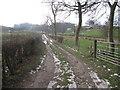 SJ8877 : Shaws Lane, Mottram-St-Andrew by Peter Turner
