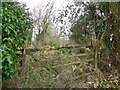 SU1126 : Old gate, Coombe Bissett by Maigheach-gheal