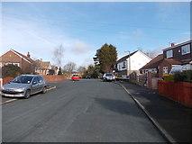 SE1926 : Mazebrook Avenue - looking towards Drub Lane by Betty Longbottom