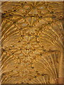 ST6316 : Sherborne: abbey fan vaulting (1) by Chris Downer