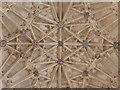ST6316 : Sherborne: abbey fan vaulting (4) by Chris Downer