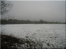SU7953 : Leisure centre playing fields by Sandy B