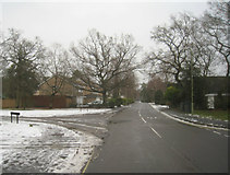 SU7953 : Long view of Tavistock Road by Sandy B