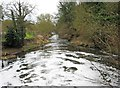 SO8582 : River Stour looking south, near Whittington by P L Chadwick