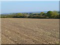 SP6501 : Farmland, Great Haseley by Andrew Smith