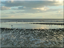 TQ7306 : Low tide on the beach, Bexhill by Robin Webster