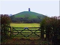 ST5138 : Glastonbury Tor by Chris McAuley