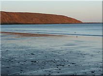 TA1281 : Beach and view of Carr Nase and Filey Brigg by Humphrey Bolton