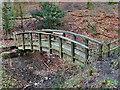 SJ8383 : Wooden Footbridge by David Dixon
